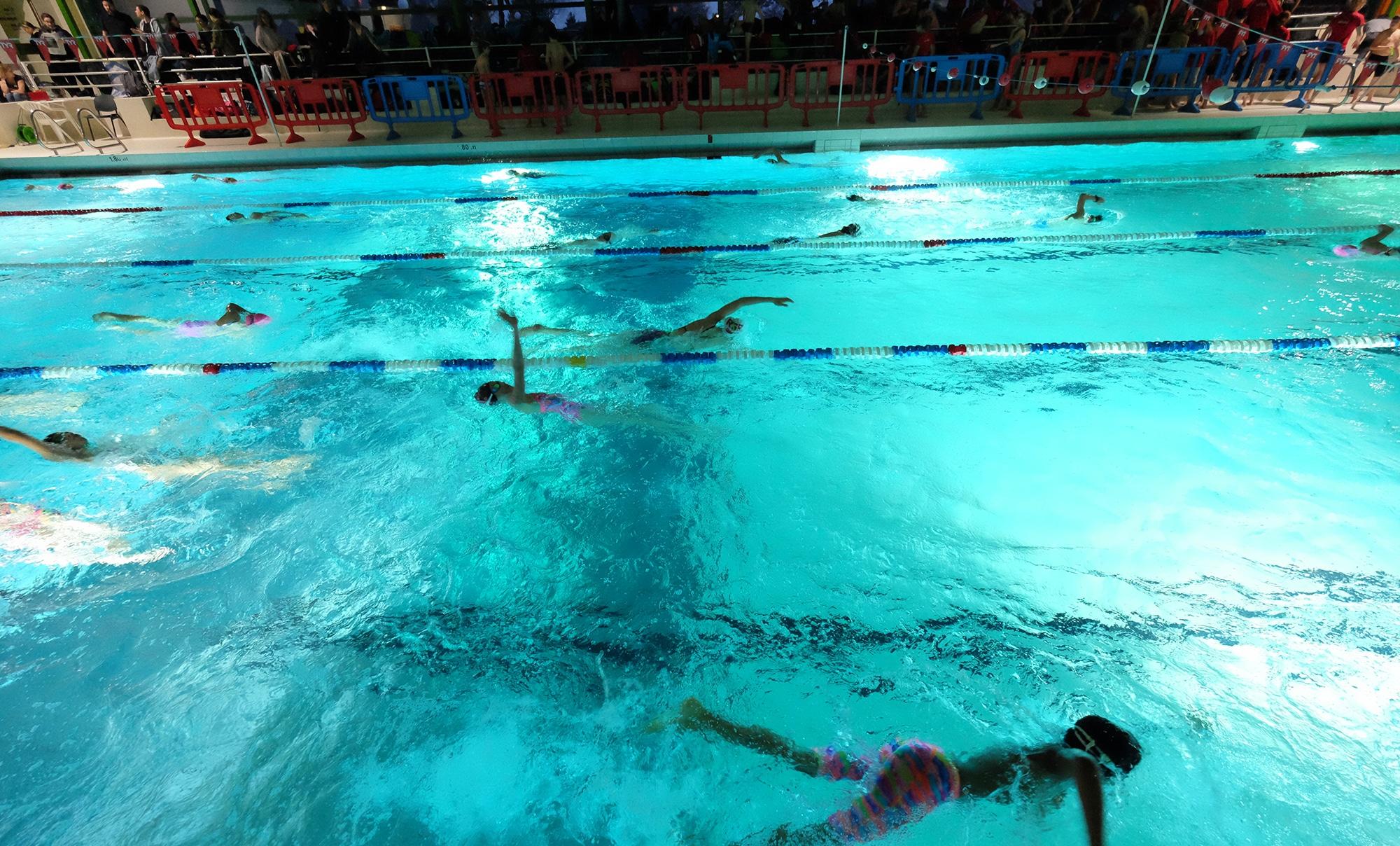 renens-natation-nuit